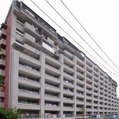 大阪府営茨木松ヶ本住宅耐震改修工事